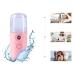Портативный увлажнитель для кожи лица нано спрей NBZ Nano Mist Soraver 30 мл Pink
