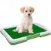 Туалет для собак NBZ Puppy Potty Pad 47х34х6 см Green
